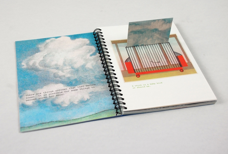 Patricia Silva Lyall Harris Collaborative Book Project